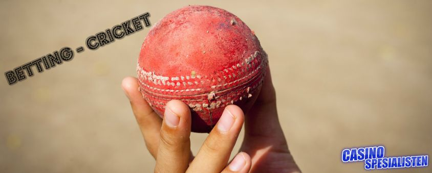 betting cricket